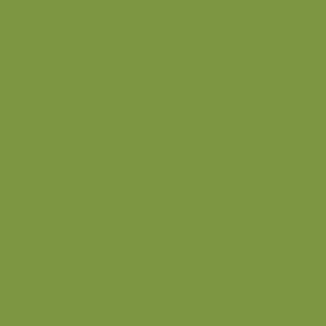 HPL - Abet 1851 Verde Mela Sei 3050x1300x0,9mm.